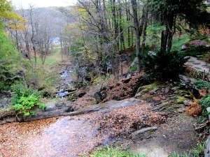 The view of the top of the waterfall from the deck outside the spot of my former desk.
