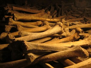 """Bones are assembled in a """"front wall"""" but just haphazardly resting behind."""